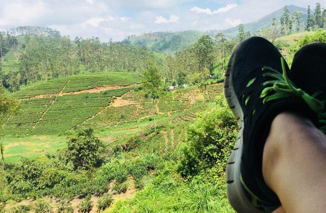 Nike Free Runners op reis
