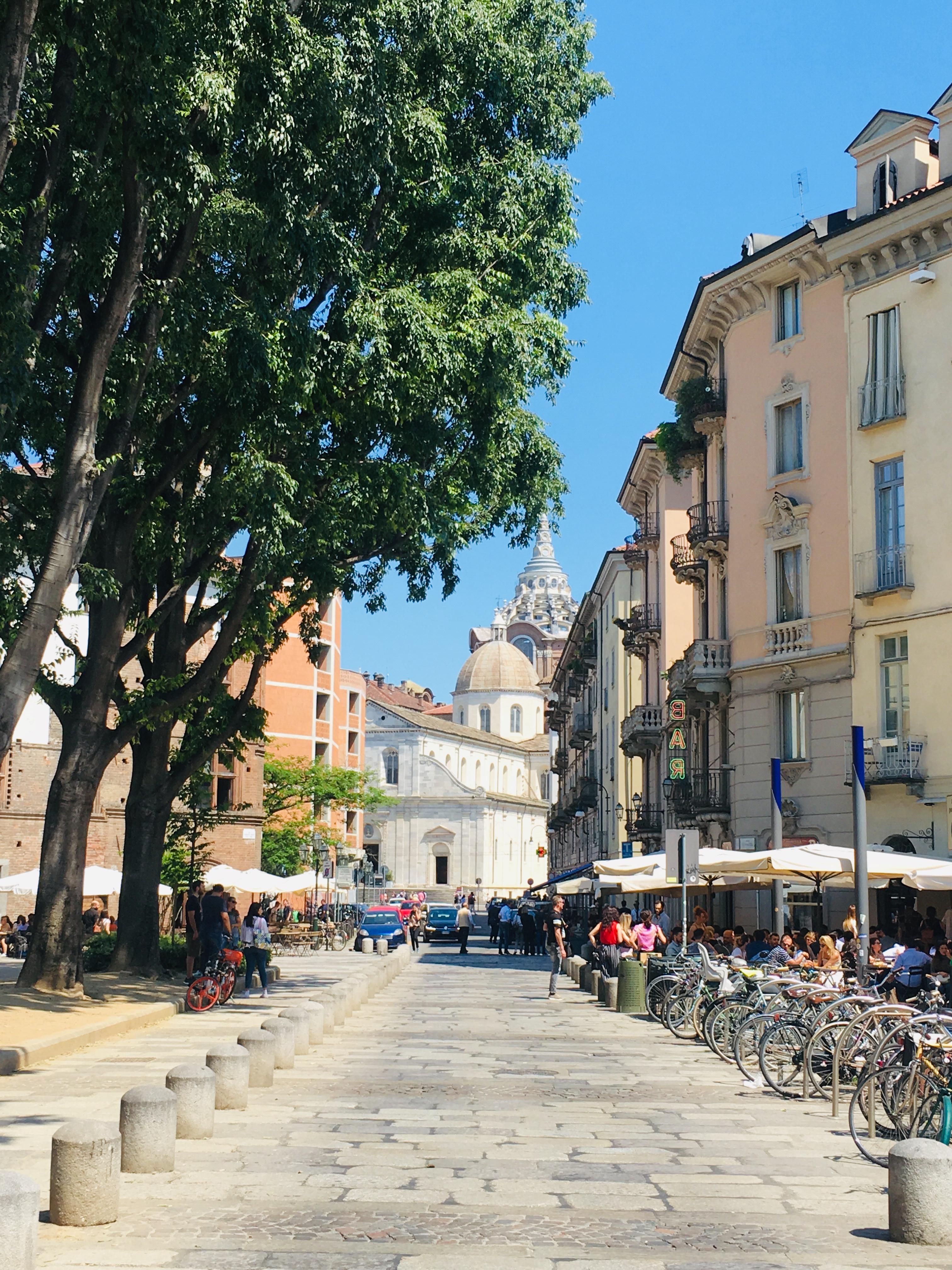 Uitzicht op de dom en koepel van Turijn